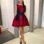 Must punase mustriga skater kleit
