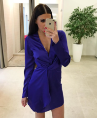 Sinine pika varrukaga kleit