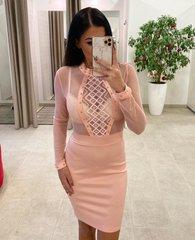Heleroosa bodycon kleit